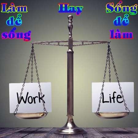 Stt chất về cuộc đời - Công việc