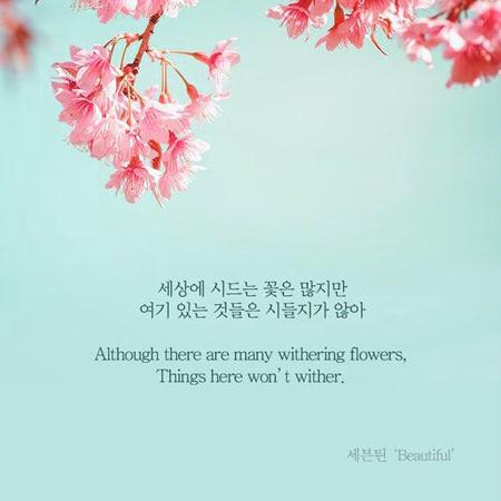 Những câu nói tiếng Hàn hay về cuộc sống